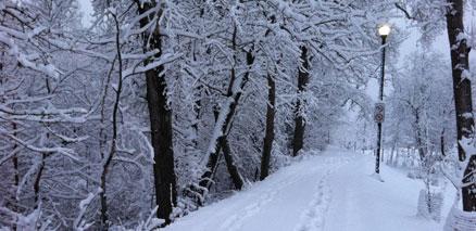 Walking path during Spring Snowfall