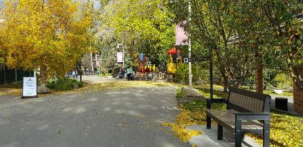 snapix_calgary_zoo_bench_and_fall_trees